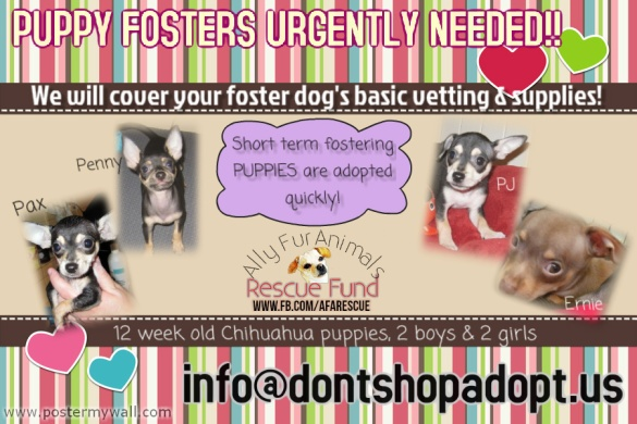 PuppyFostersNeeded
